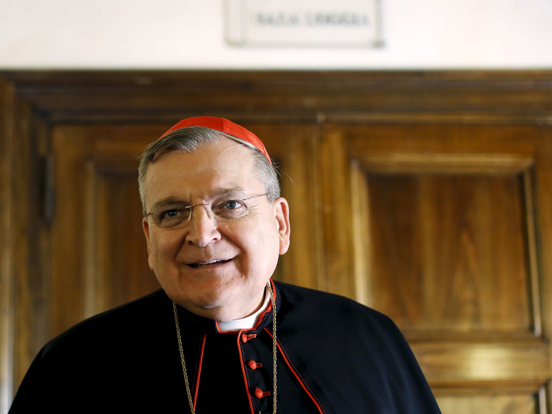 "Cardinal Burke attends a news conference by the conservative Catholic group ""Voice of the Family"" in Rome"