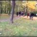 Une agression filmée choque la République tchèque.