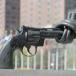 Directive de l'UE sur le désarmement : pragmatique et non bureaucratique ? Et quoi encore ?